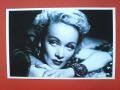 Marlene Dietrich szalone, szalon...