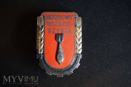 Odznaka z 1951r. Wzorowy Mozdzierzysta