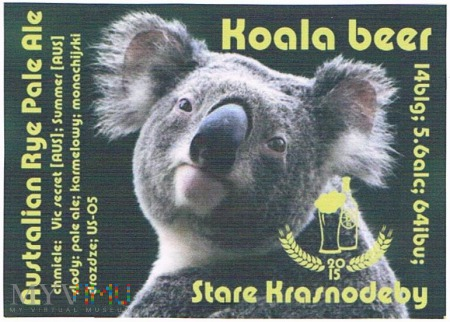 koala beer