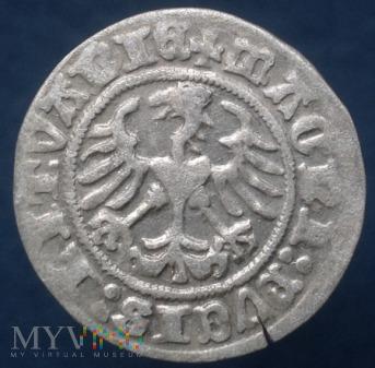 NR XI - Półgrosz Litewski 1510