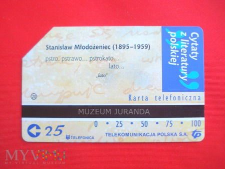 Karta magnetyczna 1282
