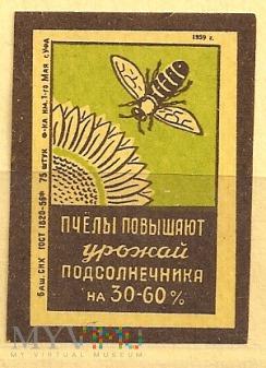 Pszczoły=Miód.1959.6