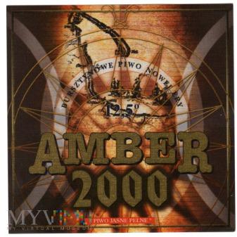 AMBER 2000
