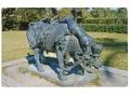 Zobacz kolekcję Quo Vadis - Ligia na byku
