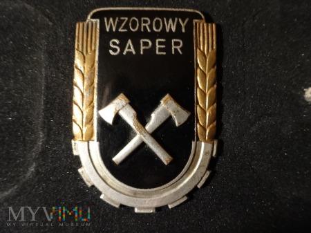 Duże zdjęcie Wzorowy Saper z 1951r