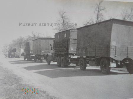 kolumna niemieckich ciężarówek