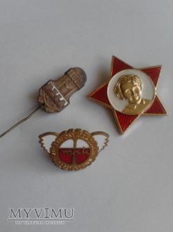 Komunistyczne odznaki