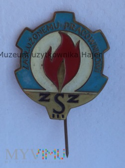 Zasłużony Pracownik ZSZ - odznaka