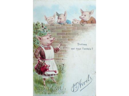 1904 Świnki świnka konewka 1 kwietnia 1er Avril