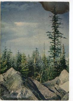 Góry Świętokrzyskie Łysica