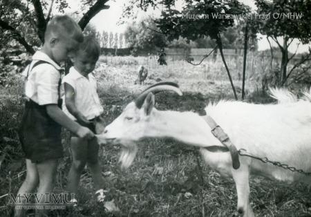 Prewentorium dla dzieci w Otwocku, lata 50. XX wie