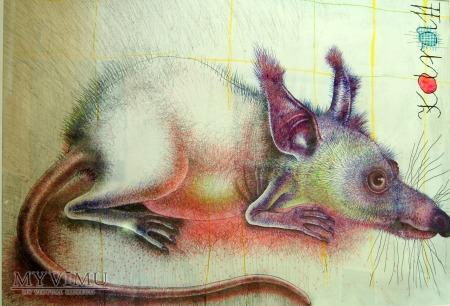 Karol Wieczorek - Szczur