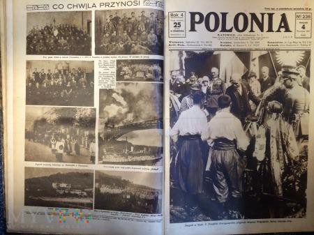POLONIA - zbiór dzienników