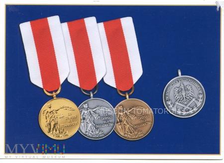 """Duże zdjęcie Medal """"Za Zasługi dla Pożarnictwa"""" - 2009"""