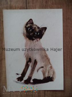 Pocztówka kot malowana Janusz Grabiański