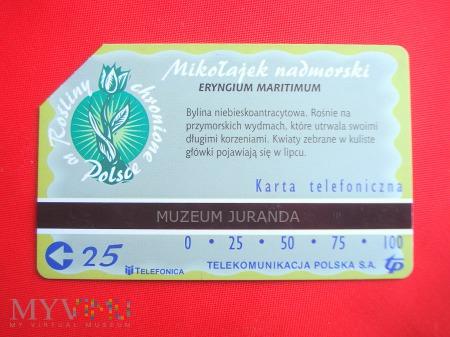 Karta magnetyczna 1323
