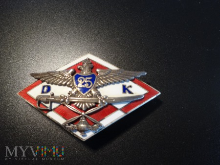 25 Dywizja Kawalerii Powietrznej ; numerowana