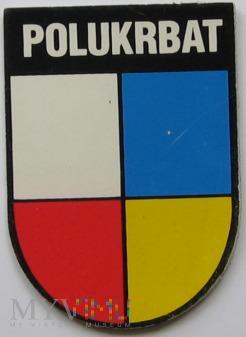 Duże zdjęcie Polsko-Ukraiński Batalion Sił Pokojowych. Przemyśl