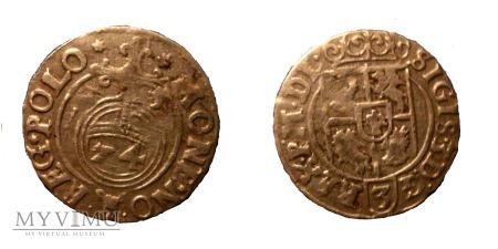Półtorak Zygmunt III Waza 1625 - R