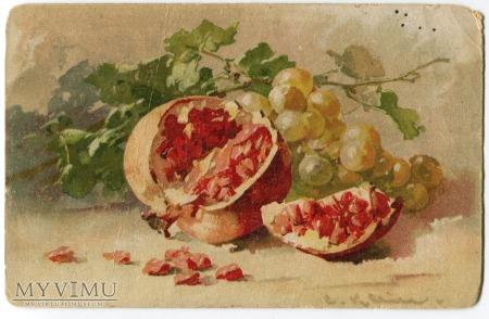 Catharina C. Klein piękne owoce Fruit Postcard