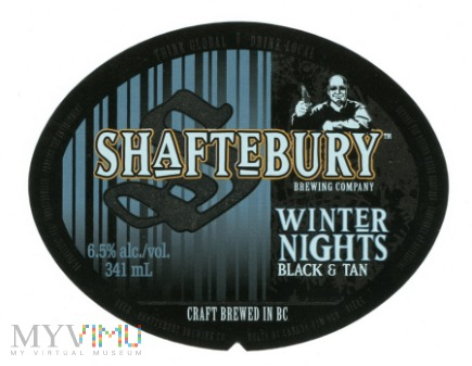 Shaftebury, Winter Night
