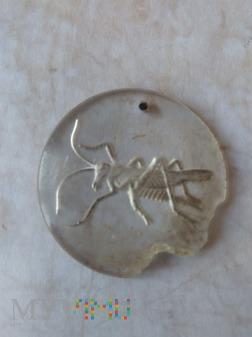 KWHW Pasikonik (Heuschrecke)