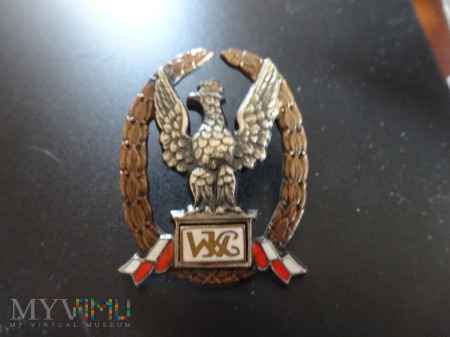 Numerowana Odznaka ,, Wzorowy Kadet''