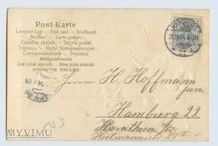 1904 rok Strach polny i psy