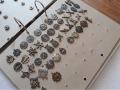 Zobacz kolekcję  Odznaki i Odznaczenia Wojska Polskiego
