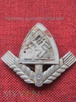 Odznaka Reichsarbeitsdienst (RAD)