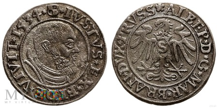 Grosz Prus Książęcych Albert Hohenzollern