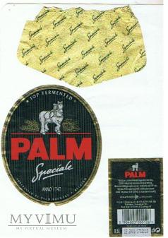 Duże zdjęcie palm speciale