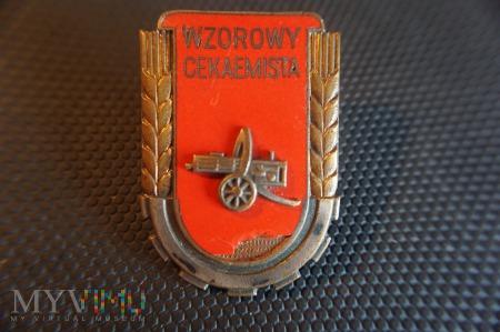 Wzorowy Cekaemista - wzór z 1951r.