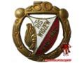 Zobacz kolekcję Odznaki sportowe - Widzew