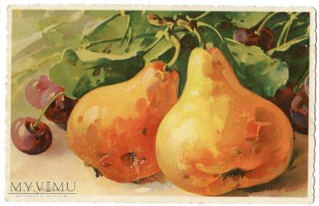 Catharina C. Klein róże Owoce Fruit card TSN