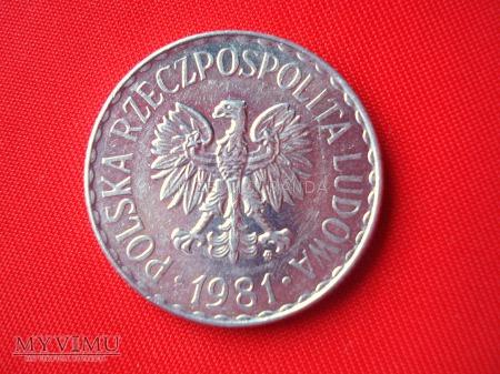 1 złoty 1981 rok