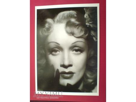 Marlene Dietrich sesja