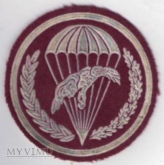 Oznaka 6 batalion desantowo-szturmowy