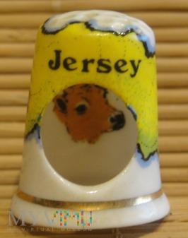 (15)BIRCHCROFT-Jersey