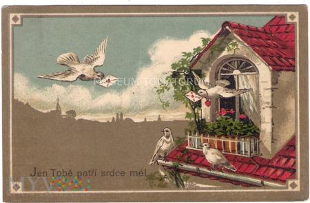 Pocztówka z gołąbkiem