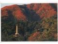 Zobacz kolekcję Chiny i Taiwan