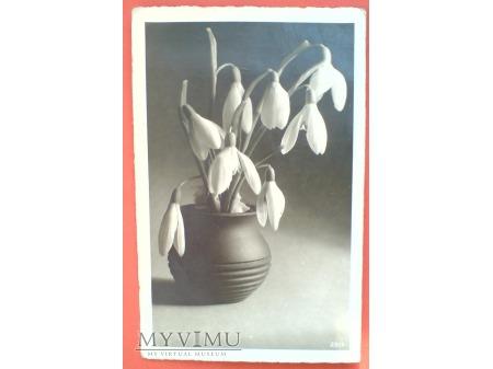 1949 Nowy Rok Życzenia Pocztówka fotograficzna