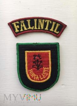 Duże zdjęcie FALINTIL - Timor Wschodni