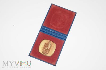 Medal pamiątkowy 99 pułk zmechanizowany