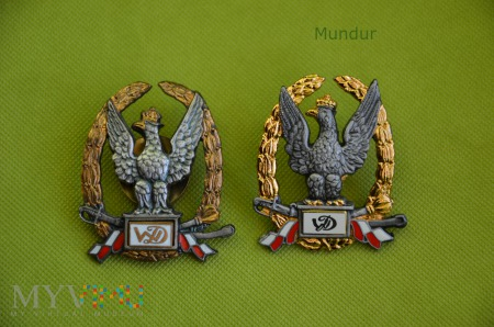 """Odznaka tytułu honorowego """"Wzorowy Dowódca"""""""