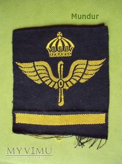 Oznaka stopnia szwedzkiego lotnictwa
