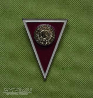 Absolventenabzeichen für Offiziere mit Diplom