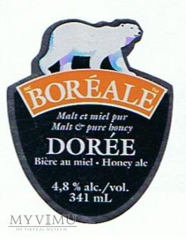 bore ale doree