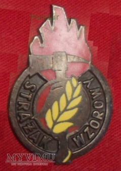 Odznaka STRAŻAK WZOROWY dla KTP