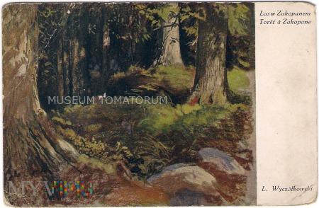 Wyczółkowski - Las w Zakopanem